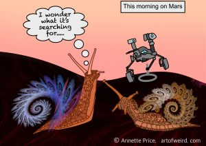 This morning on Mars